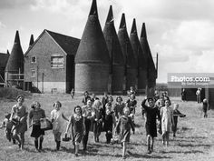 The children of Paddock Wood in Kent bring every kind of container to be filled with the bumper harvest of hops. Get premium, high resolution news photos at Getty Images Republic Of Ireland, The Republic, Old Pictures, Old Photos, Gypsy Living, Kingdom Of Great Britain, Northern Ireland, Planet Earth, Archaeology
