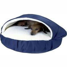 Amazon.com : Snoozer Cozy Small Pet Cave Bed With Polyester And Cedar, Color - Red : Pet Beds : Pet Supplies