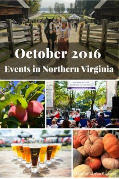 October Events in Northern Virginia - Fall Festivals and Fun near DC Virginia Fall, Hiking In Virginia, Northern Virginia, October Events, Pumpkin Patches, Chincoteague Island, Favourite Festival, Foodie Travel, Places To Eat