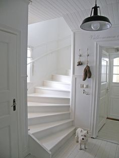 White stairs in white house Interior Stairs, Interior And Exterior, White Stairs, Entry Stairs, Fresh Farmhouse, Sweet Home, Country Interior, Farmhouse Interior, Country Decor