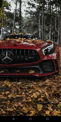 Ferrari red Mercedes-AMG GT in the forest. High-end luxury sport cars Mercedes Benz Amg, Mercedes Auto, Carros Mercedes Benz, Benz Car, Bmw Autos, Autos Toyota, Toyota Cars, Toyota Prius, Carros Audi