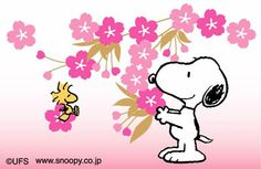 Sakura and snoopy