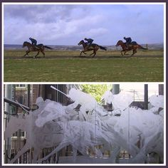 York Racecourse is still one of our favourite etched glass designs to date. Our Creative Director Davia started out by photographing the horses and jockeys running, to capture the realistic movement of the animals. Daedalian Glass Studios Partition Screen, Glass Partition, Engraving Tools, Glass Engraving, Glass Etching, Etched Glass, Glass Design, Creative Director, Cool Words