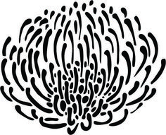 Art & Craft projects – Page 2 – South African Design Link Love Protea Art, Protea Flower, Wall Stencil Patterns, Stencil Art, Stencil Designs, Stenciling, Spider Web Drawing, South African Flowers, Large Stencils