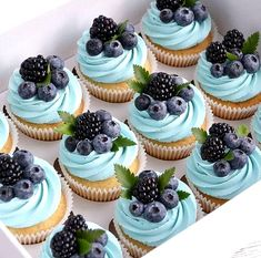 Cupcake Recipes, Cupcake Cakes, Mini Cupcakes, Blueberry Cupcakes, Cupcake Ideas, Blue Cupcakes, Fruit Cupcakes, Dessert Recipes For Kids, Drink Recipes