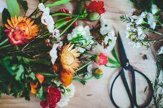 bloom-series-floral-inspiration-wedding-flowers-colourful-workshop-sydney21