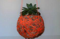 DIY Kokedama (aka DIY Hanging Moss Ball Planter)
