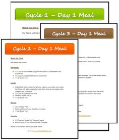 Daily Meal Plans for the 17 Day Diet and much, much more with My Diet Success Kit. OMG, I love this diet!!!!!