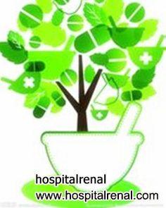 Es Posible de Librarse de la Diálisis para el Paciente de Insuficiencia Renal