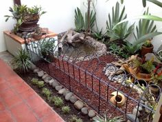 I have seen numerous suggestions for Russian tortoise diet Some great Some awful. Russian Tortoises are nibblers and appreciate broad leaf plants. Tortoise House, Tortoise Habitat, Tortoise Table, Turtle Enclosure, Tortoise Enclosure, Turtle Sanctuary, Turtle Care, Aquatic Turtles, Sulcata Tortoise