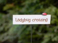 Ladybug Crossing Rock Sign Or Snail Trail Rock Sign Fairy Garden Item Fairy Accessories Fairy Sign Faerie Decor Gift idea Outdoor Paint, Outdoor Decor, Miniature Fairy Gardens, Mini Gardens, Fairy Garden Accessories, Garden Quotes, Garden Items, Garden Signs, Fairy Houses