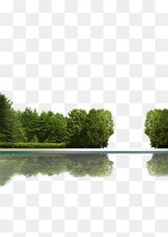 Tree shadow jungle green Fassadenschnitt - New Sites Tree Photoshop, Photoshop Brushes, Photoshop Rendering, Photoshop Elements, Landscape Architecture, Landscape Design, Green Facade, Episode Backgrounds, Affinity Photo