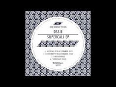 Ossie - Housedabass #music #house #electronique