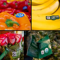 Next time you're at Whole Foods, look for Fair Trade Certified bell peppers, bananas, pineapples, roses, and more!