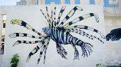 Residencia Gorila - Lionfish Project - CELESTE BYERS