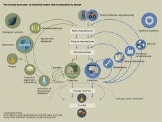Cradle to Cradle & Circular Economy als strategisches Innovationsmanagement | OmniCert Umweltgutachter GmbH - Umwelt- und Energiemanagement
