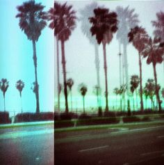 Glitch Art? Why not change your art out to reflect the season? Palm trees for summer....evergreens for winter. Makes perfect sense to me to rotate your art.. very nice photo and technically spot on. Well done.