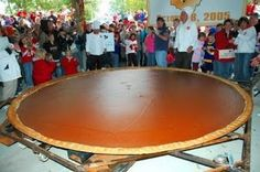 Biggest pie in the world! It's pumpkin pie! I just need all of you to help eat this! Christmas Fun Facts, Festival Names, Biggest Pumpkin, Thanksgiving Blessings, Guinness World, Roadside Attractions, Happy Fun, World's Biggest, World Records