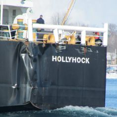 The U.S. Coast Guard Hollyhock moving up the St. Clair River breaking up the ice....showing damage from a freighter not stopping in time