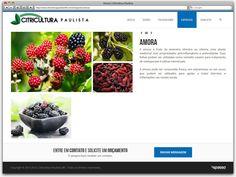Criação de Site Responsivo para a floricultura Citricultura Paulista de Betim - página especies interna