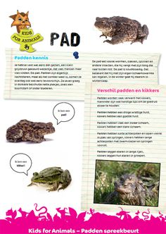 Kids For Animals - Spreekbeurten Close Reading, Learning To Be, Flora And Fauna, Amphibians, Pre School, Projects For Kids, Kindergarten, Homeschool, Teaching