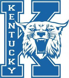 Miniature Breeds Of Cattle That Are Perfect For Small Farms Wildcats Basketball, Uk Football, Kentucky Basketball, Football Shirts, University Of Kentucky, Kentucky Wildcats, Go Big Blue, My Old Kentucky Home, Vinyl Projects