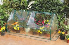 Christmas  New Year Sale Peaktop New Mini 71wx 36d X 36h Portable Green House Flower House Greenhouse -- Details can be found by clicking on the image.