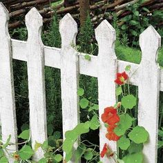 Photo: Mark Winwood/Getty Images | thisoldhouse.com | from All About Wood Fences