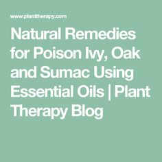 Natural Remedies for Poison Ivy, Oak and Sumac Using Essential Oils | Plant Therapy Blog