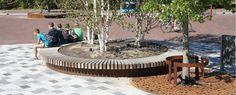 Tree Pots - Streetlife