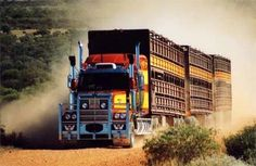 Star Western Cattle Truck | Aussie Western Star cattle carriers...the Constellation of 'Star ... Kenworth Trucks, Mack Trucks, Big Rig Trucks, Peterbilt, Train Truck, Road Train, Western Star Trucks, 4x4, Big Girl Toys