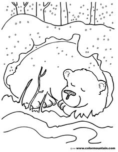 Worksheets Hibernation Worksheets bear hibernating worksheet beary bears teachers activities color sheet coloring page