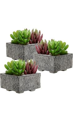 Set of 3 Decorative Mini Gray Cement Square Succulent Plant Boxes / Cactus Planter Containers - MyGift® Best Price