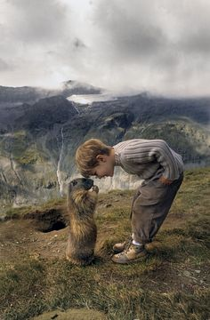 boy with alpine marmots 8