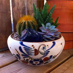Mexico Pottery Lg. Cactus Garden  Great Santa Barbara Find!