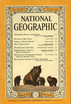 A cover gallery for National Geographic National Geographic Cover, Gifts For History Buffs, Cupboard Doors, Magazine Rack, Magazines, Bear, Vintage, Gallery, Products
