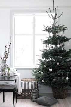 25 Simple And Minimalist Christmas Tree Decorations Minimalist Christmas Tree, Scandinavian Christmas Trees, Swedish Christmas, Noel Christmas, Modern Christmas, All Things Christmas, Simple Christmas, Winter Christmas, Country Christmas