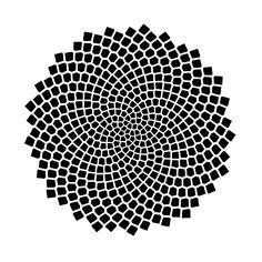 Google Image Result for http://momath.org/wp-content/uploads/spiralsBlack.jpg