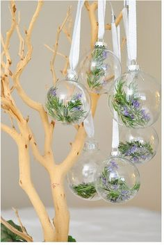 DIY::Rosemary Filled Ornaments - and other spices as well!  Good for the kitchen christmas tree!