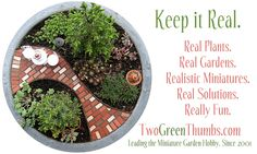 The Mini Garden Guru From TwoGreenThumbs.com | The world's only blog completely dedicated to the art and craft of gardening in miniature. Please visit us at www.TwoGreenThumbs.com