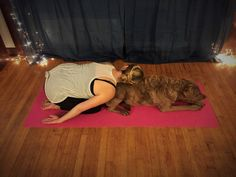 I Tried Doga, aka Yoga For You And Your Dog, And This Is What Happened