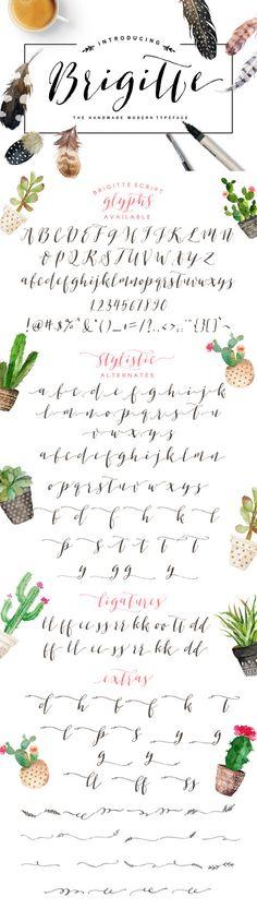 Brigitte Script with Bonus/Elegant typeface by GraphicSafari
