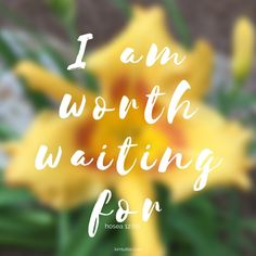 Regardless of the agenda and timeframe we have in mind, God has a perfect plan in mind   He's worth waiting for   flower   scripture   truth   inspirational quote   life   patience   kimtuttle.com   design organize simplify   inspirations and encouragement for a God centered home and life
