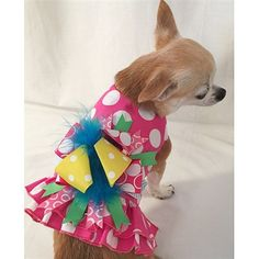 A dainty pink and white polka dot small dog harness with ruffles and a fun, colorful bow.