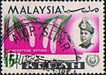 Malay State of Kedah 1965 Orchids Fine Used                       SG 120 Scott 111    Other Asian and British Commonwealth Stamps HERE!