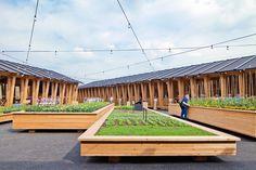 Floating Wood Planter Boxes   Slow Food Pavilion – Milan Expo 2015 / Herzog & de Meuron