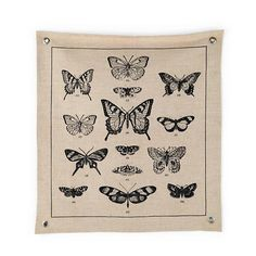 The Land of Nod   Kids Banners: Vintage Butterfly Canvas Banner in Canvas Wall Art