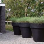 Dutch Garden Design via Studio G  Love the oversized black pots with something messy and casual in them.