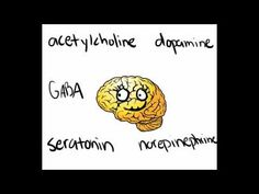 Having trouble keeping those neurotransmitters straight? try this catchy little video!
