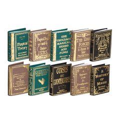 So cool!!      10-Pc. Hogwarts School Books Set